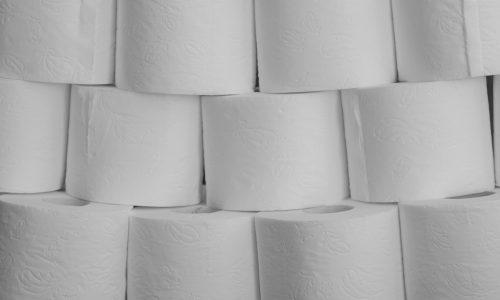 toilet-paper-4967985_1920